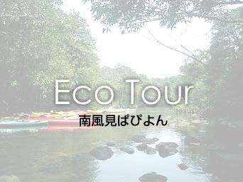 西表島の南風見ぱぴよん(営業しているか否か不明)「エコツアーショップ」