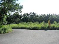 西表島の忘勿石/わすれないし - 道路からはここから入ります