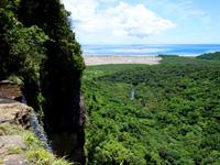 西表島のピナイサーラの滝上からの景色