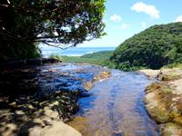 西表島のピナイサーラの滝上からの景色 - せせらぎは意外と穏やか