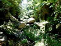 西表島のピナイサーラの滝上のせせらぎ - さらなる上流は岩が沢山