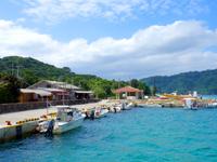 西表島の船浮港 - 待合所と浮き桟橋は少し離れています
