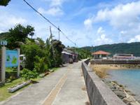 西表島の船浮港 - 船浮集落内の道