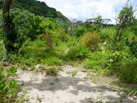 西表島のあーまん大将/キャンプ場(今後はUマット系?・旧浜小屋/旅小屋)の写真