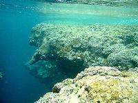 西表島の星砂の浜アウトリーフ