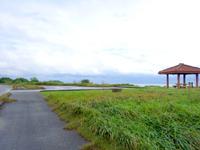 西表島の野原展望台 - 駐車場は広々としたものがあります