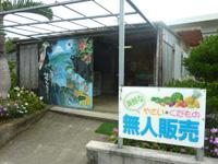 西表島の上原の無人販売所