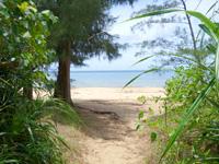 西表島のトゥドゥマリ浜/月が浜/月ヶ浜/ムーンビーチ - ビーチ入口