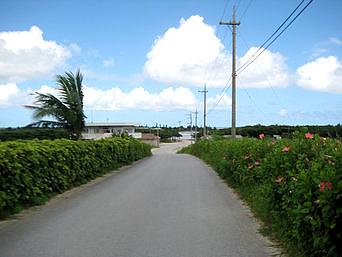 西表島の由布島への道「水牛車乗り場まできちんと舗装されています」