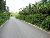 西表島の由布島への道 - キャリーバックでもok