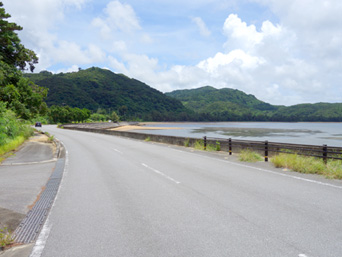 祖内〜白浜間の道
