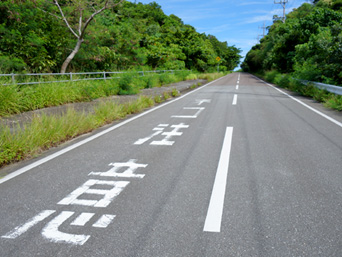 西表島の「ネコ注意」道路標示/ヤマネコ道路標識「上原港側の道路標示」