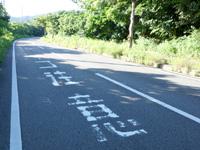 西表島の「ネコ注意」道路標示/ヤマネコ道路標識 - パイヌマヤ側の道路標示