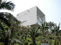 石垣島の佐竹利彦 ヤシ記念館/世界のヤシ資料&展望台