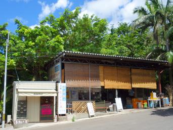石垣島のパーラーぱぱ屋/アイランドユー米原ヤシ林店「米原ヤシ林駐車場に面してあります」