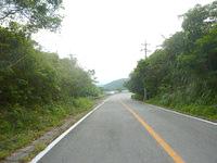 石垣島のパンナ岳/バンナ岳 - パンナ岳といえばやっぱりこのスカイライン