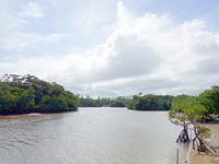 石垣島の宮良川