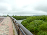 石垣島の宮良川の写真