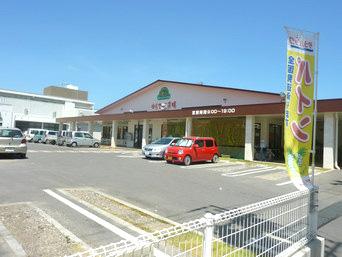石垣島のやえやま ゆらてぃく市場「市役所のすぐ近くにできた共同売店」
