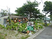 石垣島の伊原間 郷の駅
