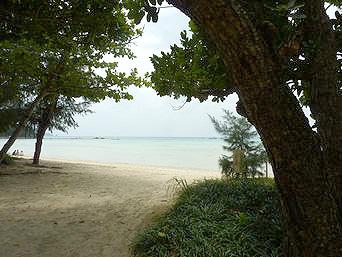 石垣島の底地ビーチ「林越しに見る海は幻想的」