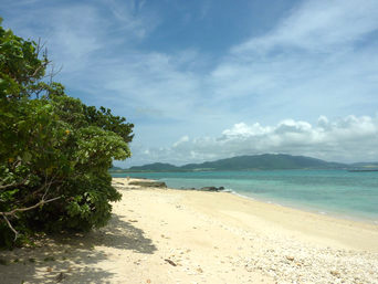 石垣島の電信屋/ビーチ「意外と綺麗なビーチで穴場かも?」
