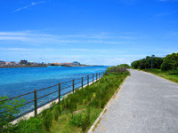石垣島の南ぬ浜町/サザンゲート公園 - 市街側の遊歩道