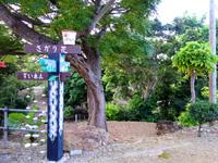 石垣島のたふく農園/田福農園