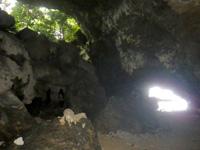 石垣島の石垣島米原 青の洞窟の奥/鍾乳石 - 海の穴と森の穴があって面白い
