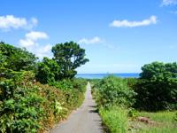 石垣島の吉原ビーチ - 集落から海へ向かう道も爽快!