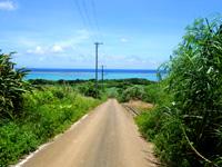 石垣島の平野ビーチ - 平野集落の突き当たりの一本手前の道