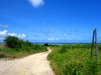 石垣島の白保シュノーケリングポイント - 未舗装ですが海まで伸びる白い道