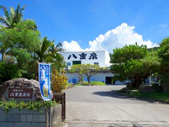 石垣島の八重泉酒造「前勢岳麓にある酒造所」