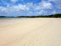 石垣島の砂の道