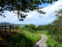 石垣島の砂の道 - 対岸の高台にある展望台脇の道から