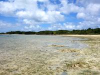 石垣島の砂の道 - 小島の浅瀬