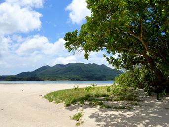 石垣島の川平小島「川平湾の対岸にある大きな島です」