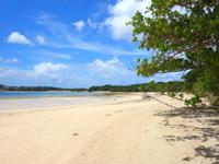石垣島の川平小島 - 川平湾側には広大なビーチと干潟