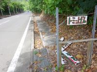 石垣島のトミーのパン - 幹線道路に看板はあるものの