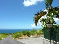 石垣島の嘉とそばの写真