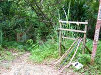 石垣島の於茂登岳への道