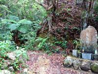 石垣島の於茂登岳への道の写真