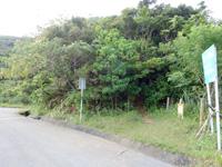 石垣島の野底マーペーへの道