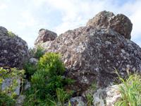石垣島の野底マーペー頂上
