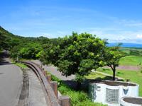 石垣島のパンナ岳公園西/バンナ岳公園西 - アミューズメントスペースも多い