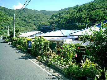 加計呂麻島の薩川の宇野商店(廃業)