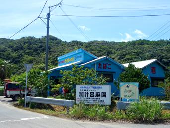 加計呂麻島のセイコーの店(瀬相)「島で一番便利な商店!」