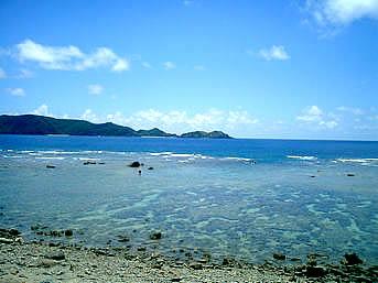 加計呂麻島の秋徳奥の海「砂浜らしい砂浜はないですがリーフまではすぐそこ」