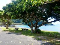 加計呂麻島の諸鈍長浜/諸鈍集落/寅さんのロケ地 - ここにもあった寅さんロケ地