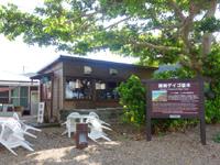 加計呂麻島の諸鈍長浜のディゴの並木 - 屋根のように伸びるデイゴの木